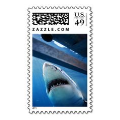 Great White Shark Approaching Cage Postage Stamps. Wanna make each letter a special delivery? Try to customize this great stamp template and put a personal touch on the envelope. Just click the image to get started!