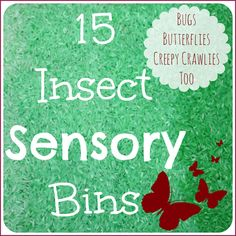 All Things Insects Sensory Play 15 + Butterflies and Bugs Sensory Bins for Kids [pinit] Our Favorite Butterflies & Bugs Sensory Bins We loved exploring bugs! I didn't realize how much we played with bug filled sensory bins until I took a look back at pictures and old posts! I have collected so many wonderful...Read More »