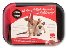 Help us celebrate!!!  Dr Anger and the staff at Animal Hospital at Tatum Ranch are so proud to become AAHA Accredited!   http://www.healthypet.com/petcare/PetsMatter/ReadMore.aspx?volume=July_August_2013=Why_Veterinary_Practices_Choose_To_Be_AAHA_Accredi=AA