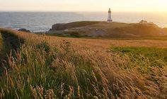 Yaquina Head Lighthouse in Newport, OR.  My FAVORITE lighthouse along the Oregon Coast. I love lighthouses.