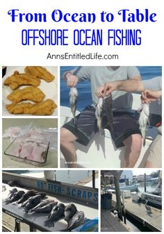 Offshore Ocean Fishing - From Ocean to Table. A day of Atlantic Ocean offshore f. - Offshore Ocean Fishing – From Ocean to Table. A day of Atlantic Ocean offshore fishing on a chart - Sea Fishing, Saltwater Fishing, Bass Fishing, Fishing Boats, St Petersburg Florida, Offshore Fishing, Charter Boat, Atlantic Ocean, Tropical Fish