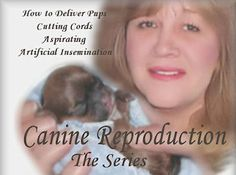 whelping, Video   Book  and dog breeding,  dog, dogs,  puppy, puppies, pups,  breeding, whelp, dog, reproduction, Ask  Doctor  Gabe, debbie jensen,  Whelping Guide, debbie jensen whelping supplies,   heat,   puppies, pregnant dog,canine pregnacy,  pregnancy of a canine,  Heat cycles  of a dog,  mating, birth,   pup, dog breeder,labor stages,  dogs temperature, Caring for newborn puppies, whelping box, disease of a dog, whelping supplys and products, whelping supplies, vaccines, my dog…
