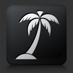 Black Square Button with Palm Tree Icon vector art illustration Vector Icons, Vector Art, Palm Tree Icon, Hawaiian Designs, Black Square, Art Sketches, Royalty, Illustrations, Button