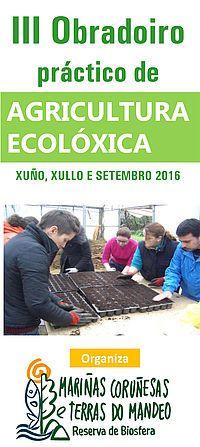 III Obradoiro de agricultura ecolóxica: Concello Bergondo