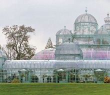 Part of the Green House, Royal Palace, Laeken, Belgium. Open 3 weeks max every year... http://www.brusselslife.be/fr/article/visites-des-serres-royales-laeken