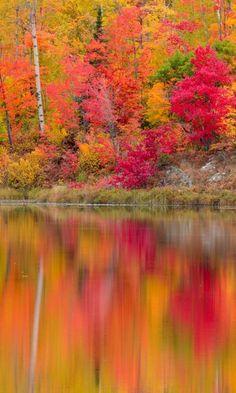 Autumn Reflections - Gryphon Lake, Espanola Ontario