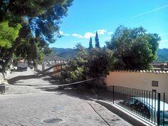 La caída de un árbol en el paseo de Sopeña causa daños sobre una propiedad
