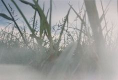 Pinhole Camera Project: How to Turn a Disposable Camera