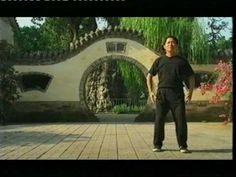 Zhan zhuang (站桩) day 1