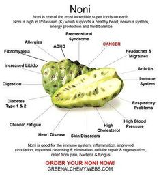Noni. This is a nice image. Buyer beware: If you buy noni juice make sure that it has no other fruit juices added! Pure noni juice in a glass bottle is best!