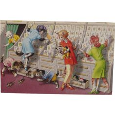 Alfred Mainzer Dressed Cats Postcard Cats at the Card Store