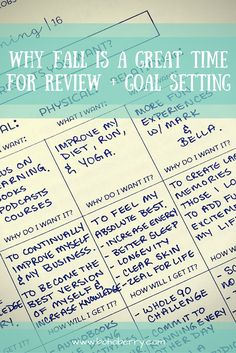 Have you ever done a (pre) year end review? Fall is the best time to take a look back and plan for the year ahead. Goal setting at it's finest!