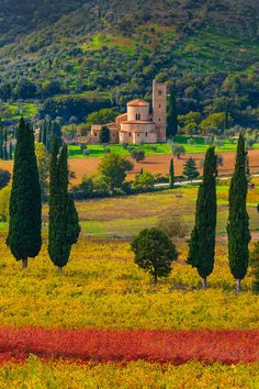 A Piece Of History in Autumn - Val d'Orcia Region, Tuscany, Italy... I love the vibrant colours in this pic...