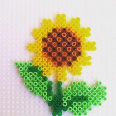 Sunflower hama mini beads by hadavedre