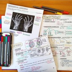 Learning medicine with illustration   Sarah Clifford