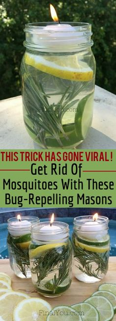 Are Mosquitoes Giving You A Hard Time? This Bug-Repelling Recipe Will Completely Solve Your Problem Nothing ruins a summer BBQ or picnic like an invasion of mosquitos. For an all-natural way to get mosquitos off the guest list at your next outdoor gathering try this simple Mosquito Repellant Mason Jar. The active ingredient is Lemon …