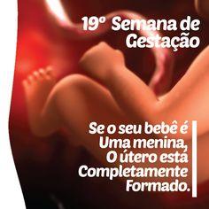 19ª. Semana Gestacional Bebê (15,3cm)    Forma-se uma substância sobre a pele do bebê chamada vernix caseoso, que é um material gorduroso e esbranquiçado.    Você vai notar nos vídeos de parto que os bebês nascem cobertos por este vernix...    Uma proteção produzida dentro do ventre para a pele do bebê ficar impermeabilizada, é uma barreira contra ações bacterianas. Após o nascimento ele continua proporcionando proteção ao bebê, então, exceto em situações específicas, ele não deve ser…