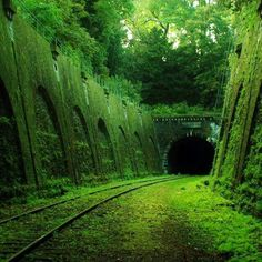 Funny pictures about Abandoned railroad in Paris. Oh, and cool pics about Abandoned railroad in Paris. Also, Abandoned railroad in Paris. Abandoned Train, Abandoned Buildings, Abandoned Places, City Buildings, World's Most Beautiful, Beautiful Places, Amazing Places, Places Around The World, Around The Worlds