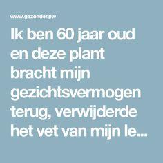 Ik ben 60 jaar oud en deze plant bracht mijn gezichtsvermogen terug, verwijderde het vet van mijn lever en maakte mijn darmen schoon
