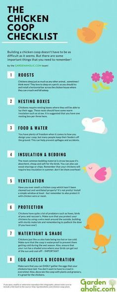 The Chicken Coop Checklist | Homesteading Ideas by Survival Life at http://survivallife.com/2015/09/29/the-chicken-coop-checklist/