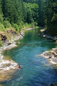 Cowichan River Park, Cowichan Valley, Vancouver Island, British Columbia, Canada