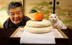 "Misao named the white cat ""Fukumaru"" in hope the ""God of fuku (good fortune) comes and everything will be smoothed over like maru (circle)""."