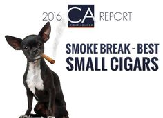 2016 CA Report: Smoke Break – Best Small Cigars