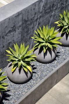 Otra idea para el jardín con grava, limpio y de bajo mantenimiento