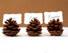 pine cone wedding place setting-- OMG. Give me gold glitter and let me be free outdoors. lol ! So doing this.