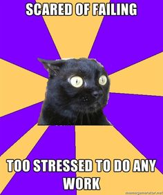 Well, that pretty much defines how I feel about comps.  And thesis.  And applying to PhD programs.