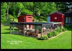 Chicken coop an run