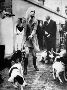 Nothing says chic like a trench coat, mini dress, boots and a plethora of Dogs!!