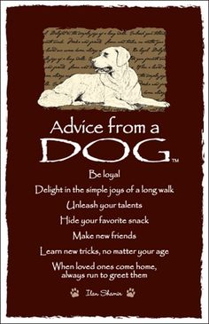 Spirit Totem Animals:  #Advice from a #Dog.