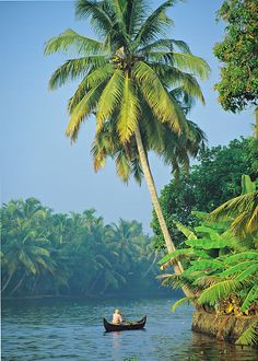 Backwaters of Kerala , India