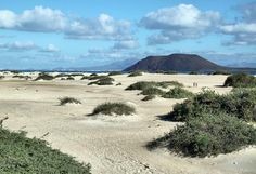 Dunas de Corralejo en Fuerteventura Island Design, Canario, Island Beach, Canary Islands, Tenerife, Best Hotels, Travel Destinations, Spain, Around The Worlds