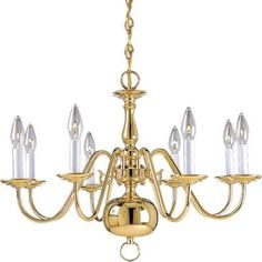 Progress Lighting Americana Collection 8-Light Polished Brass Chandelier - P4357-10 at The Home Depot