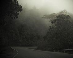 Costa Rica Landscape Photography, Surreal Drive Through the Costa Rican Rainforest, Foggy Nature Photograph, Travel Print, Home Decor Art
