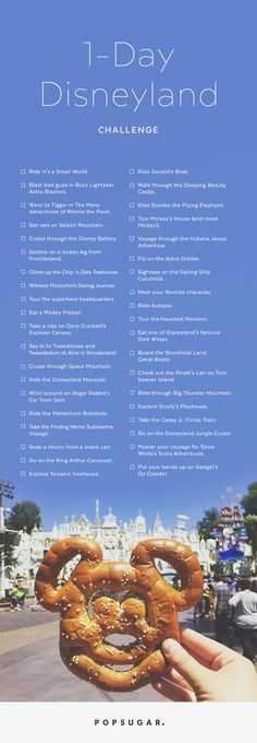 Disneyland fanatics, hear ye: I've got the ultimate one-day challenge for you.