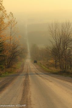 Early morning in the Beaver Valley (Ontario, Canada) by Maureen Elliott cr. Places Around The World, Around The Worlds, Wasaga Beach, Side Road, Dangerous Roads, Visit Canada, Take Me Home, Early Morning, Pathways