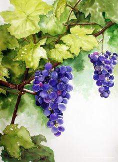 Watercolor Fruit, Watercolour Painting, Watercolor Flowers, Grape Painting, Fruit Painting, Grape Wallpaper, Grape Drawing, Fruit Art, Watercolor Techniques