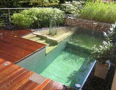 Natural/chemical free pool