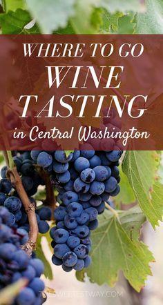 You MUST go wine tasting in Central Washington!! So many beautiful wineries and amazing wine! #winetasting #washington #usatravel