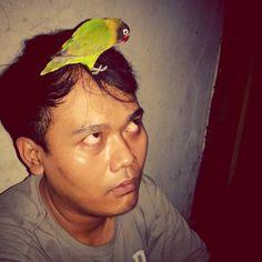 SiPicek.. My.. #lovebird