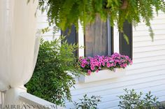 LaurieAnna's Vintage Home: Back Door Guests are Best. Love this window box!