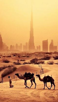 Dubai is situated on the coast of the Persian Gulf in the Arabian desert, United Arab Emirates.
