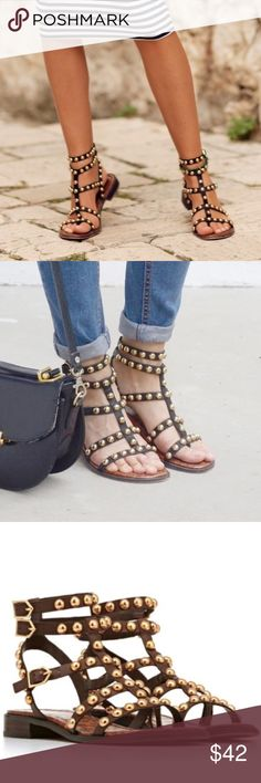 SAM EDELMAN Studded Gladiator Eavan Sandals Sam Edelman Evan sandal brand new without box. Never worn ( tried on only). Size 9.  Festival Pick Material: Leather Heel height: 0.5 in Platform height: 0.25 in Color dark brown with gold studs. Sole is black. Sam Edelman Shoes Sandals