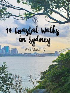 Sydney really is a walker's paradise – anywhere green you look along the harbour (which is everywhere) will more than likely have a really cool walking trail nestled in it amongst the trees, foliage, beaches, and cliffs. And once I discovered this, I made it my mission to discover each and every one that I possibly could. I'm pretty sure I did a solidly thorough job of it too – I have tried not to leave any of the coastal walks in Sydney unexplored.