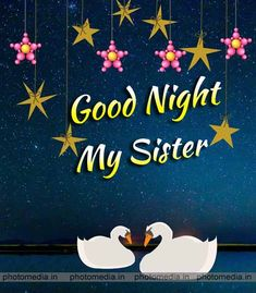 Good Morning Sister Quotes, Good Night Sister, Cute Good Night, Good Night Sweet Dreams, Morning Qoutes, Good Night Greetings, Night Wishes, Funny Sister Memes, Beautiful Good Night Quotes