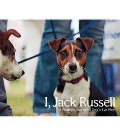 Andy Hughes I, Jack Russell Book