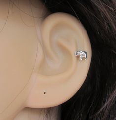 Hey, I found this really awesome Etsy listing at http://www.etsy.com/listing/171223997/tiny-baby-elephant-cartilage-earring